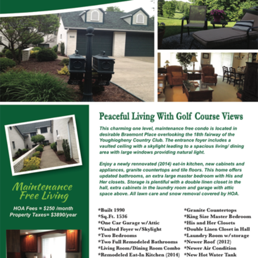 Pittsburgh Realty Brochure Design